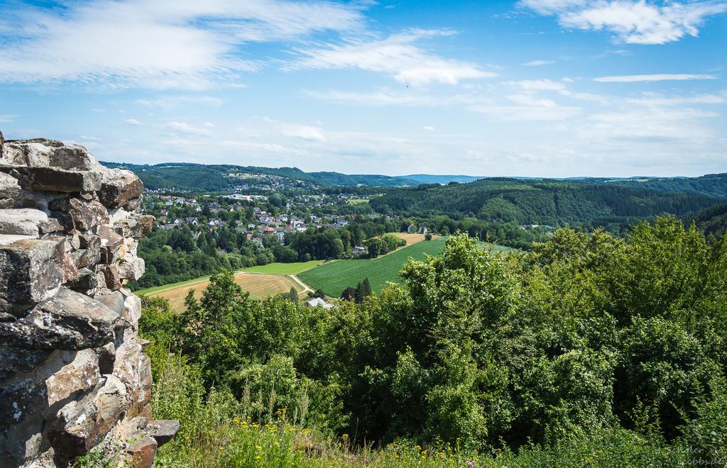 Aussicht von Burg Windeck